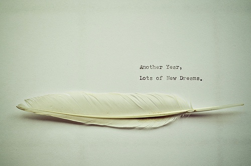 New year wishes: Another year, lots of new dreams! Happy new year.