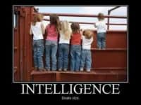 Intelligence short story